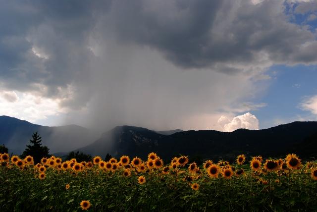 orages du mois de juillet en savoie Q7w23m