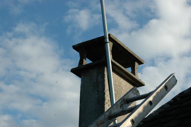 Récupération d'essaim dans une cheminée Eq9lly