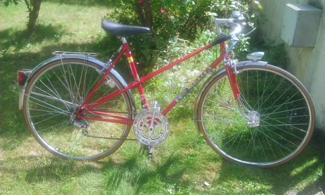 Eddy Merckx Thyx1i